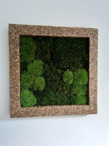 Mosschilderij