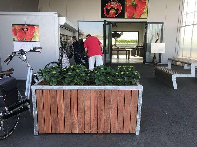 Maatwerk plantenbak