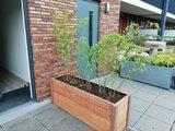 Plantenbak hout