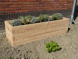 Plantenbak zonder bodem