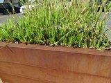Plantenbak modulair