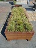 Plantenbak rechthoek