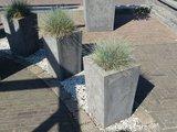 Stenen plantenbak