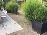 Fiberstone plantenbak