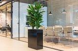 Kunststof plantenbak