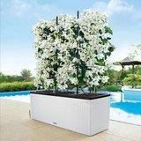 Witte plantenbak