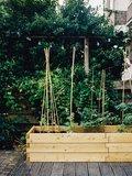 Plantenbak larikshout