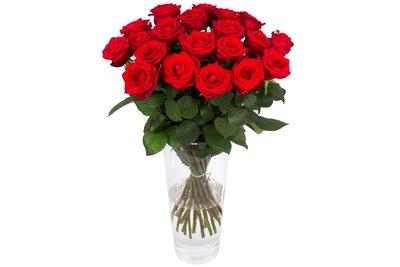 Roos Red Naomi Large (20 stuks)