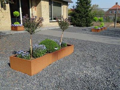 Plantenbak Cortenstaal - Rechthoek zonder bodem