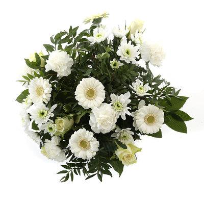 Springtime White (Springtime White)