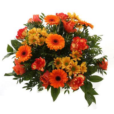 Springtime Orange (Springtime Orange)