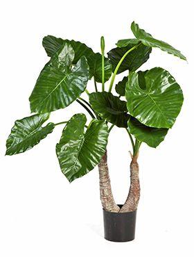 Kunstplant - Alocasia calidora