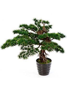 Kunstplant - Bonsai pinus