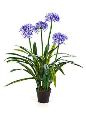 Kunstplant - Agapanthus