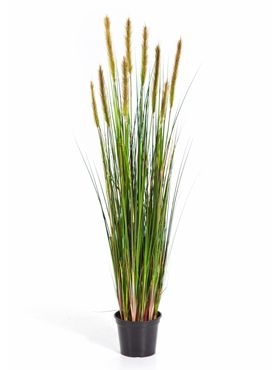 Kunstplant - Grass foxtail high