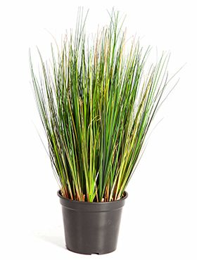 Kunstplant - Grass foxtail