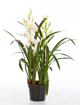 Kunstplant - Cymbidium orchid