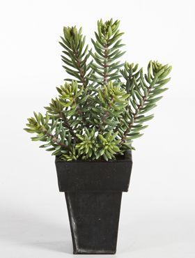 Kunstplant - Sedum cluster plant