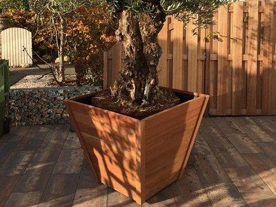 Plantenbak TW Taps - Hardhout
