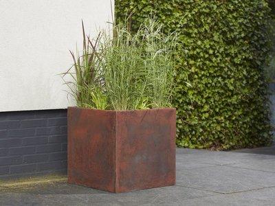 Plantenbak Corten Look - Vierkant