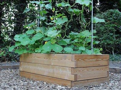 Modulaire plantenbak XL - hout