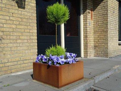 Plantenbak Cortenstaal - Vierkant