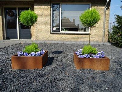 Plantenbak Cortenstaal - Vierkant zonder bodem