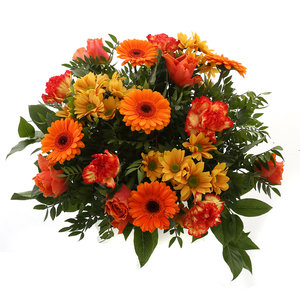 Springtime Orange