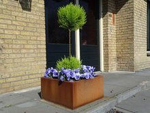 Vierkante cortenstaal plantenbak